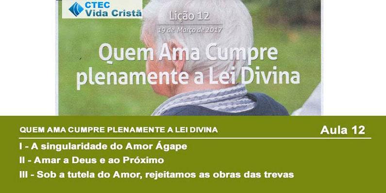 Quem ama cumpre plenamente a lei divina